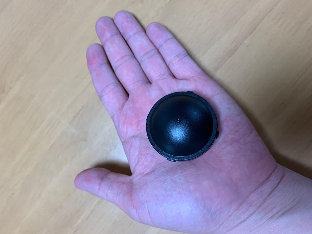 掌の上のブラックキャップ